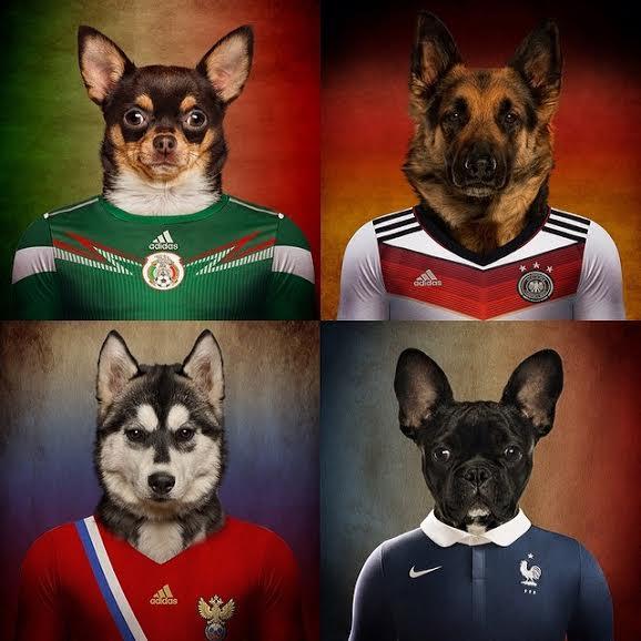 psi-svetsko-prvenstvo