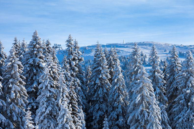 Skijanje Kop 1