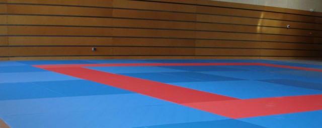 judo-tatami-63499-1685553