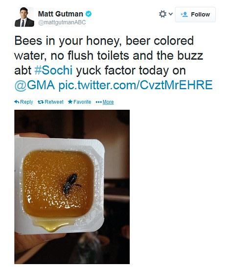 Pčela u medu